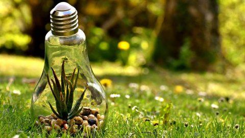 【海外SDGs事例】持続可能な生産消費形態確保の取り組み